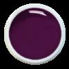 Colorgel V10 Aubergine