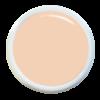 Colorgel V19 light nude